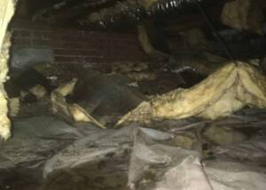 Crawl Space Repair Raleigh NC
