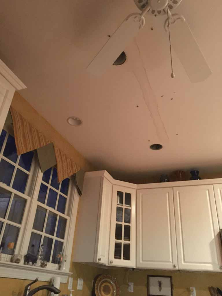 Water Damaged Ceiling in Cary, NC 1