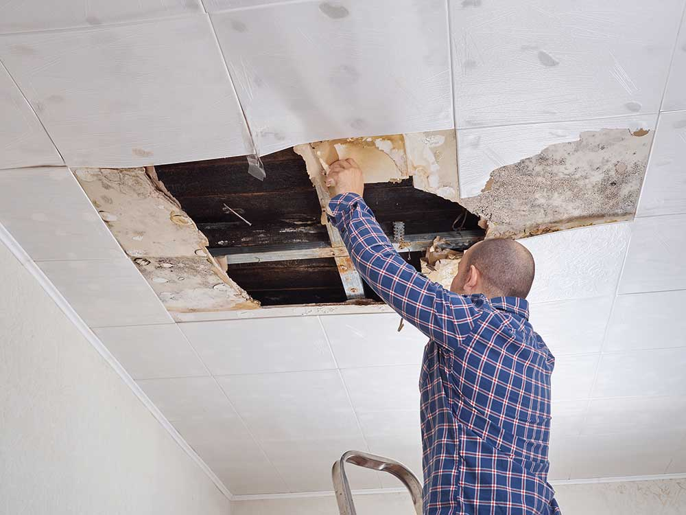 Water Damaged Ceiling Cleanup, Repair, & Restoration in Knightdale NC 1