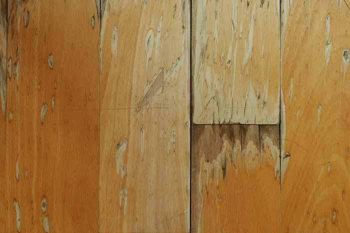 hardwood floor water damage restoration in Garner NC water damaged hardwood floors